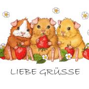 Karte_Gruesse_Shop